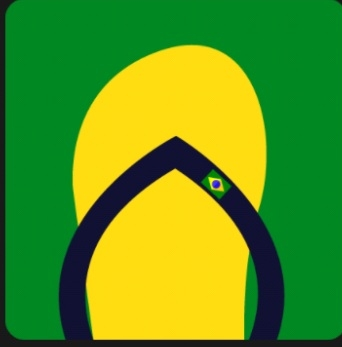 Icon Pop Quiz Answers Brand Havaianas