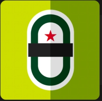 Icon Pop Quiz Answers Brand Heineken